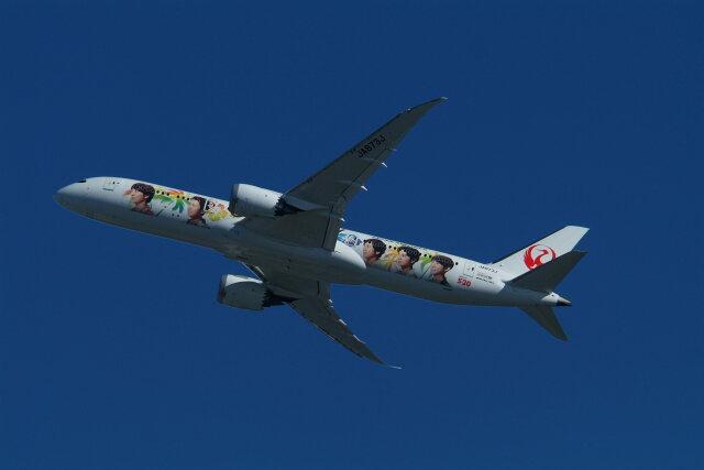 どらネコ★きんぐさんが、羽田空港で撮影した日本航空 787-9の航空フォト(飛行機 写真・画像)