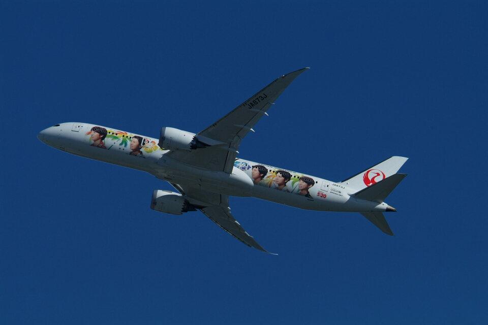 どらネコ★きんぐさんの日本航空 Boeing 787-9 (JA873J) 航空フォト