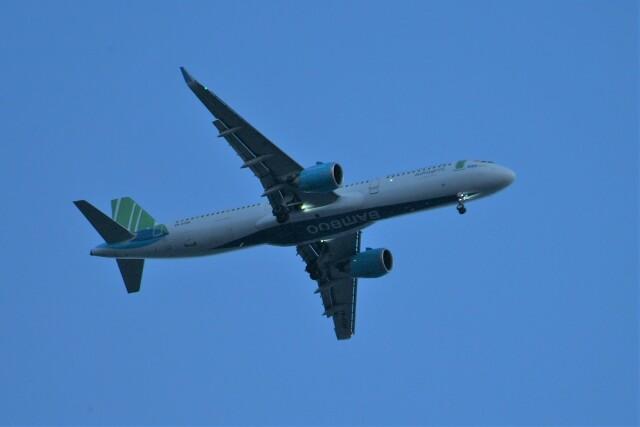 どらネコ★きんぐさんが、羽田空港で撮影したバンブー・エアウェイズ A321-251Nの航空フォト(飛行機 写真・画像)