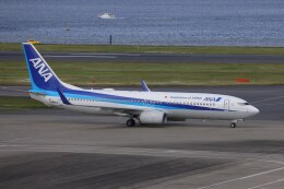 OS52さんが、羽田空港で撮影した全日空 737-881の航空フォト(飛行機 写真・画像)