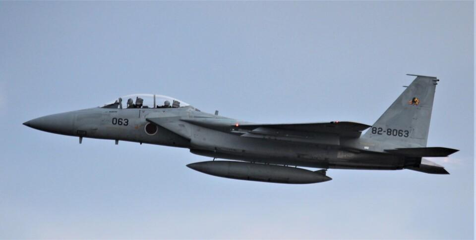 こびとさんさんの航空自衛隊 Mitsubishi F-15DJ Eagle (82-8063) 航空フォト