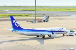航空フォト:JA56AN 全日空 737-800