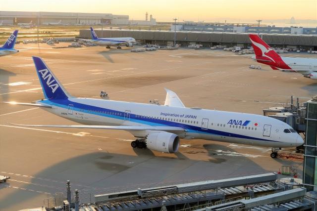 Hiro Satoさんが、羽田空港で撮影した全日空 787-9の航空フォト(飛行機 写真・画像)