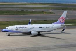 フッ軽の極美さんが、中部国際空港で撮影したチャイナエアライン 737-809の航空フォト(飛行機 写真・画像)
