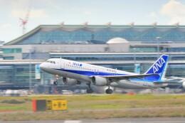 Hiro Satoさんが、羽田空港で撮影した全日空 A320-211の航空フォト(飛行機 写真・画像)