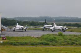 航空フォト:JA8781 日本航空学園 YS-11