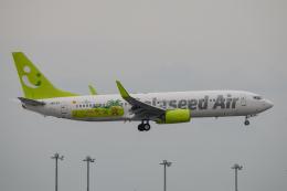 kuraykiさんが、羽田空港で撮影したソラシド エア 737-86Nの航空フォト(飛行機 写真・画像)