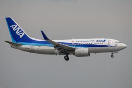 kuraykiさんが、羽田空港で撮影した全日空 737-781の航空フォト(飛行機 写真・画像)