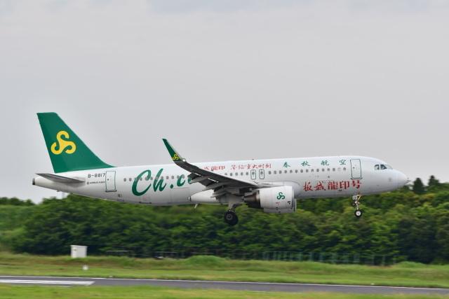 チョロ太さんが、成田国際空港で撮影した春秋航空 A320-214の航空フォト(飛行機 写真・画像)