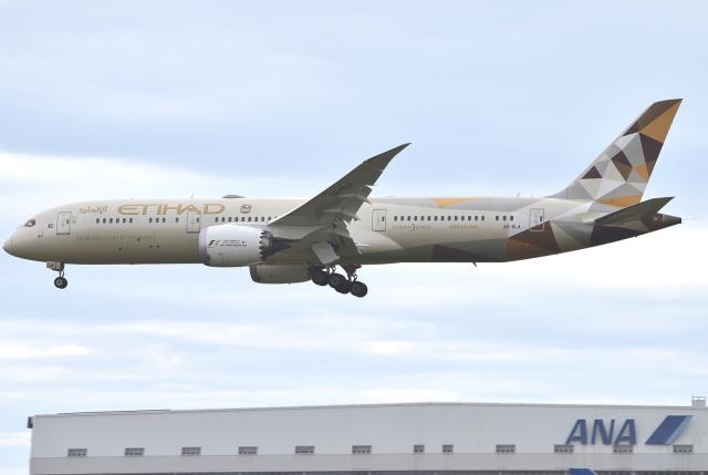 jun☆さんが、成田国際空港で撮影したエティハド航空 787-9の航空フォト(飛行機 写真・画像)