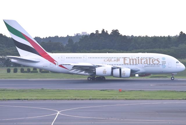 jun☆さんが、成田国際空港で撮影したエミレーツ航空 A380-861の航空フォト(飛行機 写真・画像)