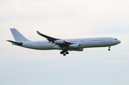 IMP.TIさんが、成田国際空港で撮影したハイ・フライ・マルタ A340-313Xの航空フォト(飛行機 写真・画像)
