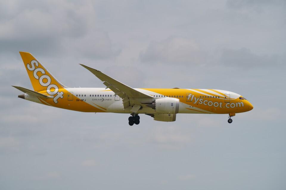 IMP.TIさんのスクート Boeing 787-8 Dreamliner (9V-OFJ) 航空フォト
