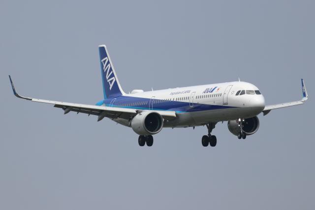kunimi5007さんが、仙台空港で撮影した全日空 A321-272Nの航空フォト(飛行機 写真・画像)