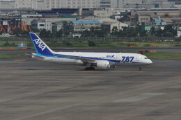 kumagorouさんが、羽田空港で撮影した全日空 787-8 Dreamlinerの航空フォト(飛行機 写真・画像)