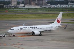 なかすぃ~さんが、伊丹空港で撮影した日本航空 737-846の航空フォト(飛行機 写真・画像)