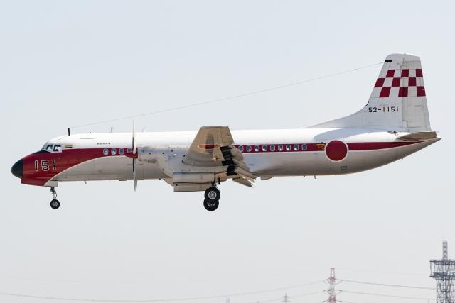 Ariesさんが、入間飛行場で撮影した航空自衛隊 YS-11-103FCの航空フォト(飛行機 写真・画像)