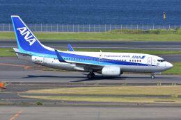 サンドバンクさんが、羽田空港で撮影した全日空 737-781の航空フォト(飛行機 写真・画像)