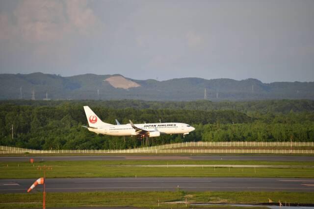 シャークレットさんが、新千歳空港で撮影した日本航空 737-846の航空フォト(飛行機 写真・画像)