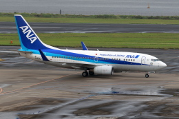 TAKA-Kさんが、羽田空港で撮影した全日空 737-781の航空フォト(飛行機 写真・画像)