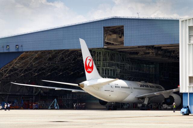 latchさんが、伊丹空港で撮影した日本航空 787-8 Dreamlinerの航空フォト(飛行機 写真・画像)