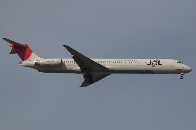 Deepさんが、羽田空港で撮影したJALエクスプレス MD-81 (DC-9-81)の航空フォト(飛行機 写真・画像)