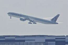 JUTENさんが、中部国際空港で撮影したカタール航空 777-3DZ/ERの航空フォト(飛行機 写真・画像)