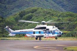 じーのさんさんが、八丈島空港で撮影した海上保安庁 EC225LP Super Puma Mk2+の航空フォト(飛行機 写真・画像)