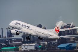 航空フォト:JA843J 日本航空 787-8 Dreamliner
