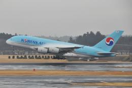 チャーリーマイクさんが、成田国際空港で撮影した大韓航空 A380-861の航空フォト(飛行機 写真・画像)