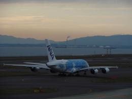 C.B.Airwaysさんが、中部国際空港で撮影した全日空 A380-841の航空フォト(飛行機 写真・画像)