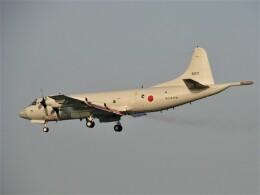 C.B.Airwaysさんが、那覇空港で撮影した海上自衛隊 P-3Cの航空フォト(飛行機 写真・画像)