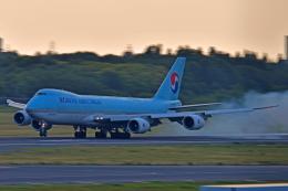Souma2005さんが、成田国際空港で撮影した大韓航空 747-8B5F/SCDの航空フォト(飛行機 写真・画像)