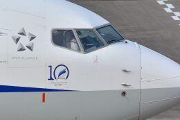 サンドバンクさんが、羽田空港で撮影した全日空 737-8ALの航空フォト(飛行機 写真・画像)