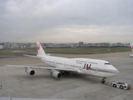 hachiさんが、福岡空港で撮影した日本航空 747-446Dの航空フォト(飛行機 写真・画像)