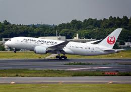 航空フォト:JA835J 日本航空 787-8 Dreamliner