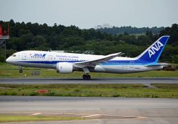 航空フォト:JA805A 全日空 787-8 Dreamliner