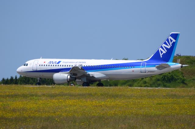 ITM58さんが、能登空港で撮影した全日空 A320-211の航空フォト(飛行機 写真・画像)