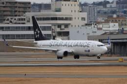 平凡なおっちゃんさんが、伊丹空港で撮影した全日空 737-881の航空フォト(飛行機 写真・画像)