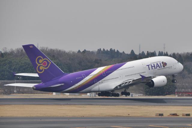 チャーリーマイクさんが、成田国際空港で撮影したタイ国際航空 A380-841の航空フォト(飛行機 写真・画像)