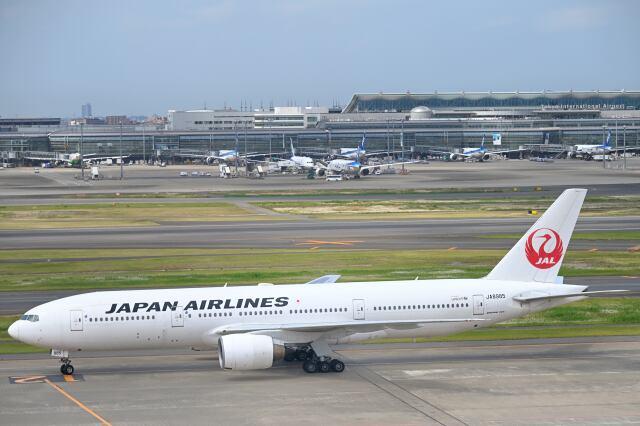 シグナス021さんが、羽田空港で撮影した日本航空 777-246の航空フォト(飛行機 写真・画像)