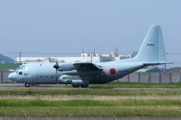 よっしぃさんが、徳島空港で撮影した海上自衛隊 C-130Rの航空フォト(飛行機 写真・画像)