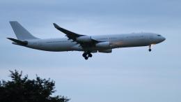 raichanさんが、成田国際空港で撮影したハイ・フライ・マルタ A340-313Xの航空フォト(飛行機 写真・画像)