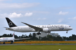 harahara555さんが、成田国際空港で撮影した全日空 787-9の航空フォト(飛行機 写真・画像)