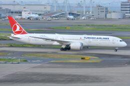サンドバンクさんが、羽田空港で撮影したターキッシュ・エアラインズ 787-9の航空フォト(飛行機 写真・画像)