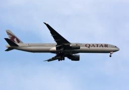 アルビレオさんが、成田国際空港で撮影したカタール航空 777-3DZ/ERの航空フォト(飛行機 写真・画像)