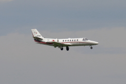 Shin-chaさんが、羽田空港で撮影した読売新聞 560 Citation Encore+の航空フォト(飛行機 写真・画像)