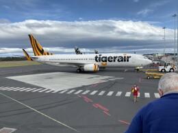 Ask4_kunさんが、シドニー国際空港で撮影したタイガーエア・オーストラリア 737-8FEの航空フォト(飛行機 写真・画像)