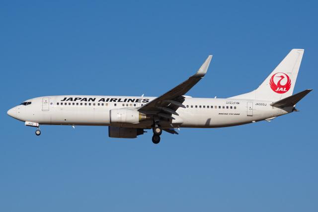 Tatsuya.Kさんが、成田国際空港で撮影した日本航空 737-846の航空フォト(飛行機 写真・画像)