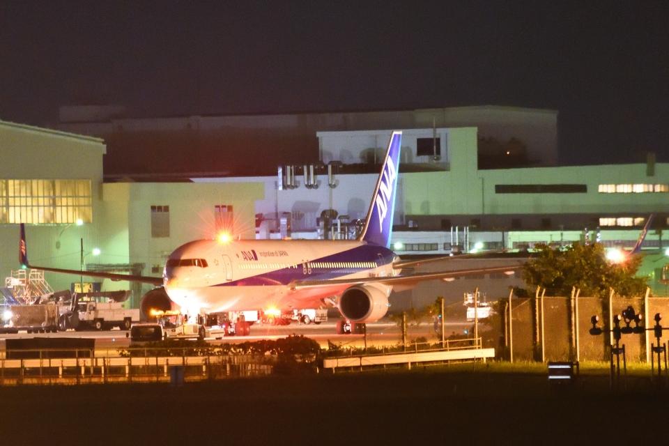 木人さんの全日空 Boeing 767-300 (JA623A) 航空フォト